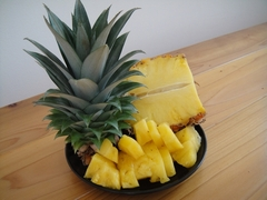 Harvest of the first pineapple!?