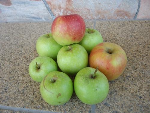 apple-011.JPG
