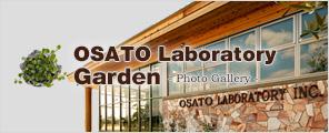 OSATO Laboratory Garden